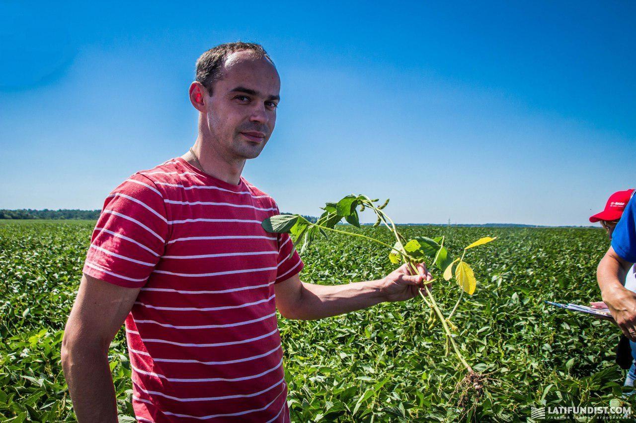 Александр Маленький показывает посевы