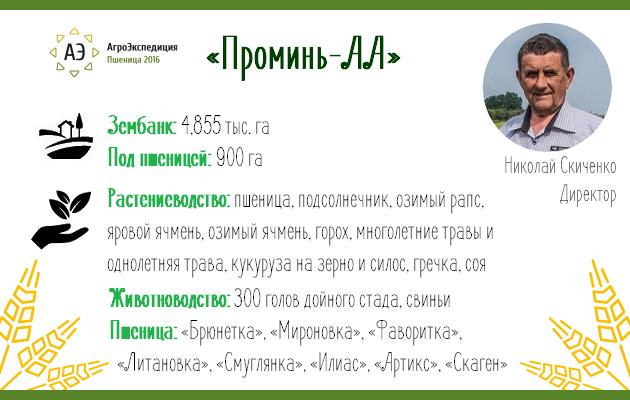 Общая информация о компании «Проминь АА»