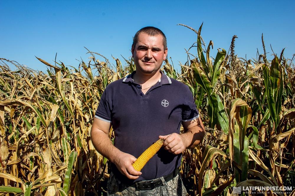 Александр Кузьменко, главный технолог и агроном предприятия «Полисся»