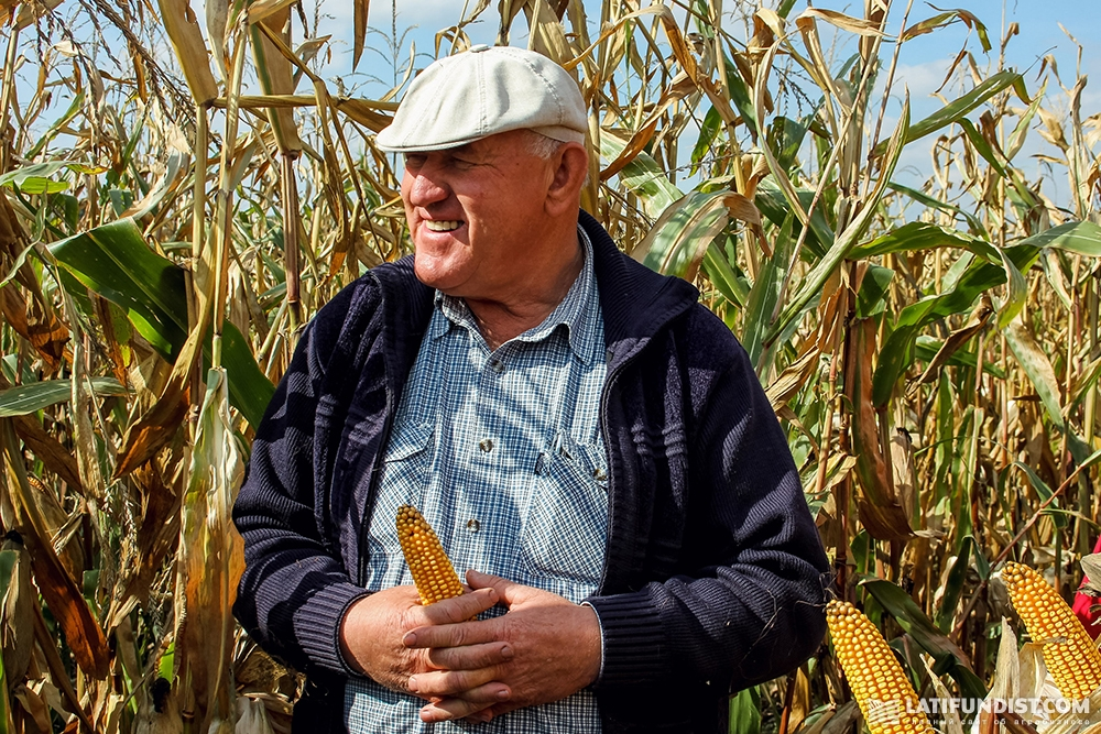 Василий Ткаченко показывает кукурузу ФХ «Видродження»