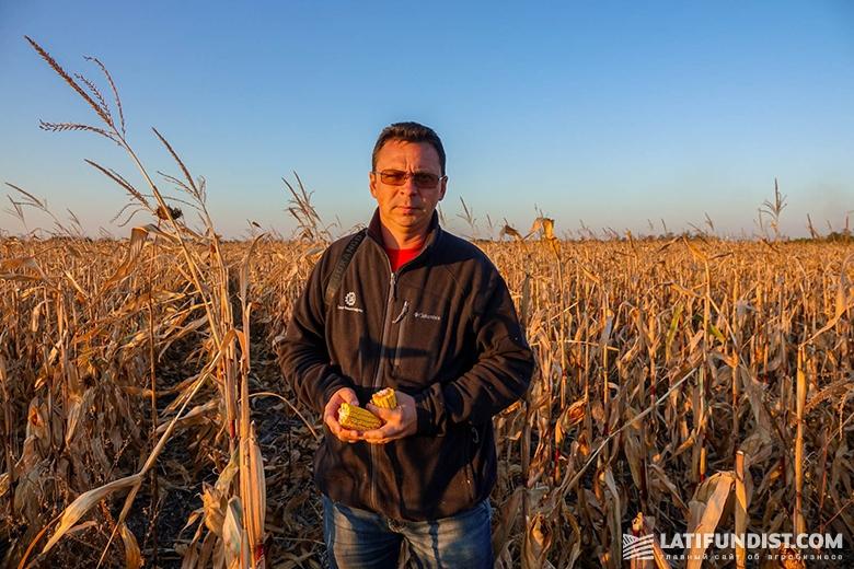 Андрей Андриенко, директор сектора Центрального региона «Лимагрейн Украина»