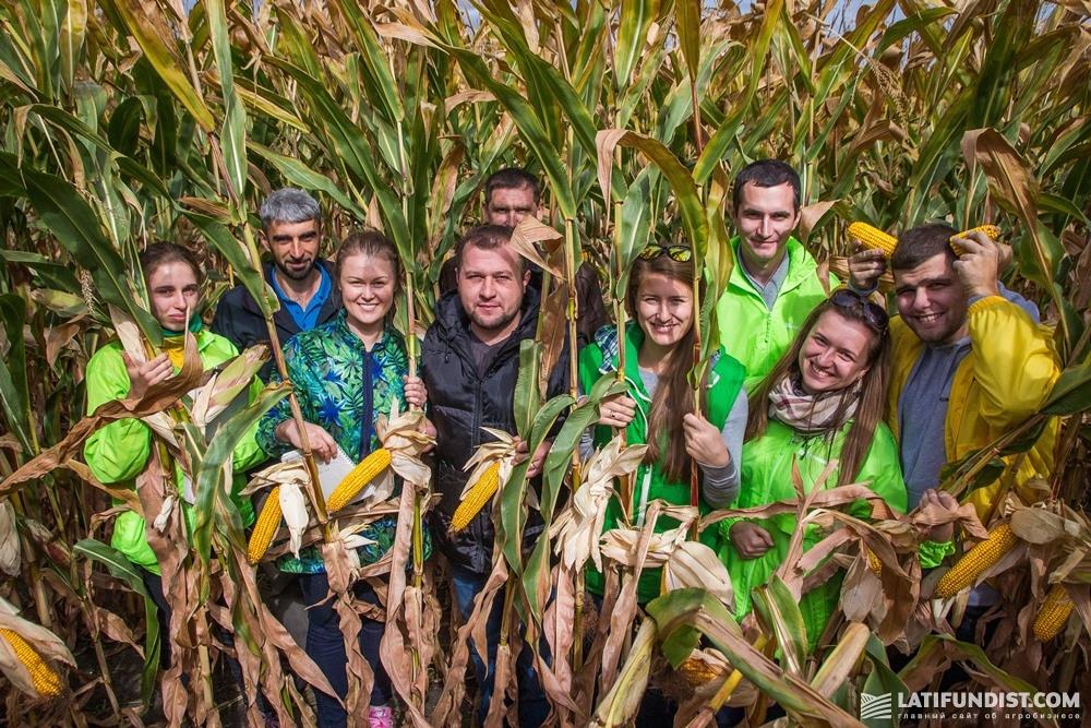 АгроЭкспедиторы в кукурузе