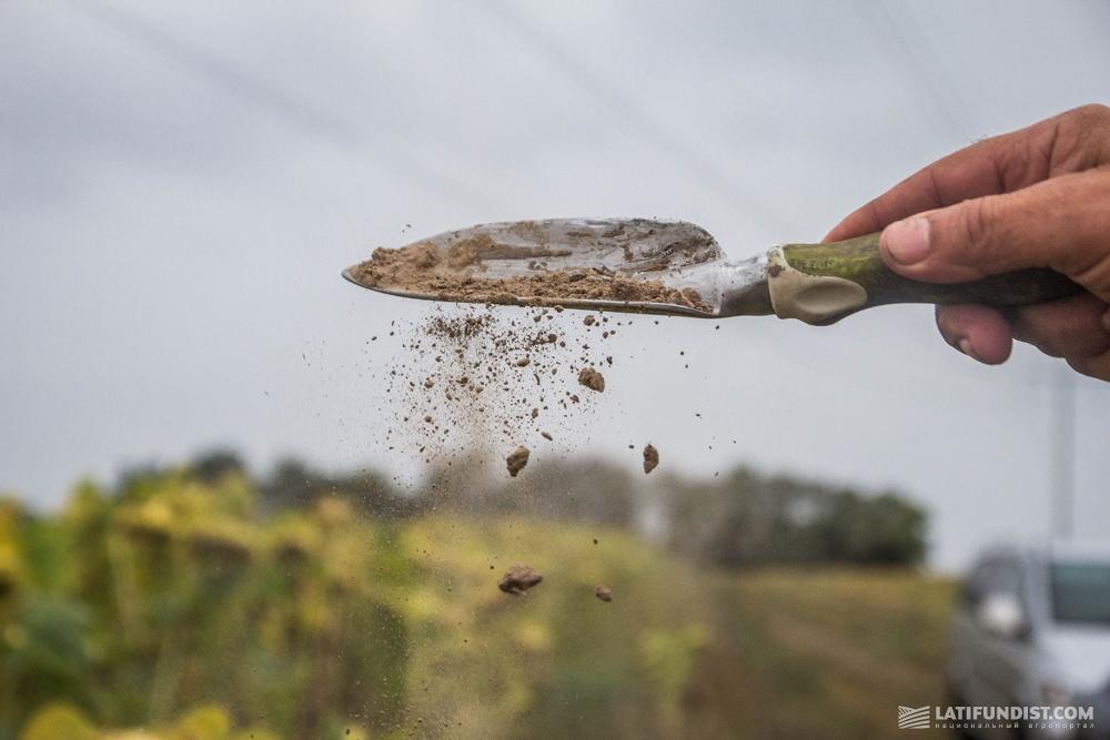 Определяем влажность почвы