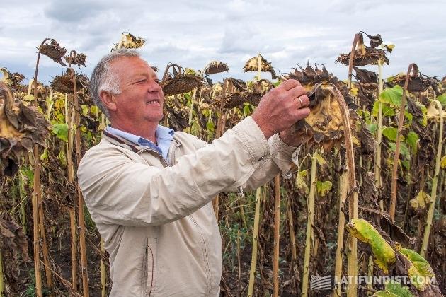 Виктор Мельниченко, агроном предприятия «Олиана»