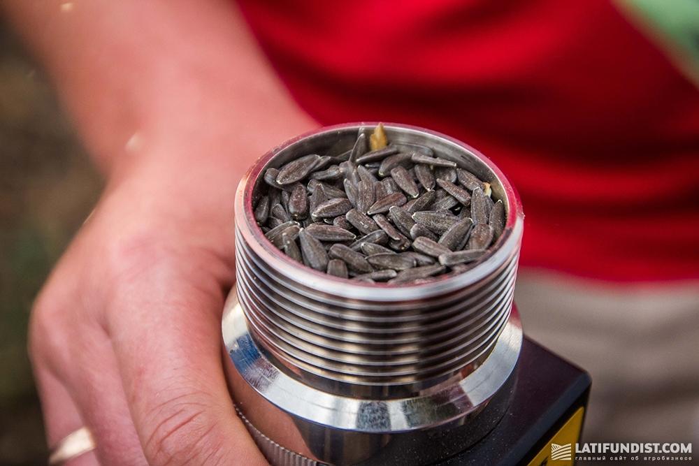 Измеряем влажность семян влагомером