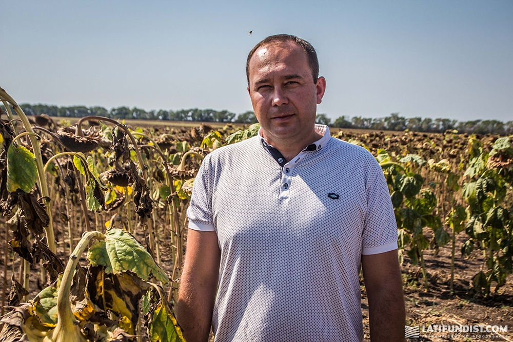 Сергей Мирошниченко, главный агроном предприятия «Запорожье-Агро»