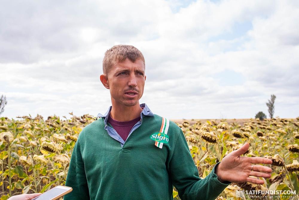 Руслан Ярченко, главный агроном предприятия «Гелиос-1»