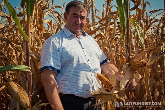 Исполнительный директор предприятия «Олимп» Иван Косенко демонстрирует кукурузу иностранной селекции