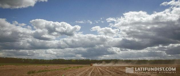 Хозяйство в Киевской области «Бровари картопля»