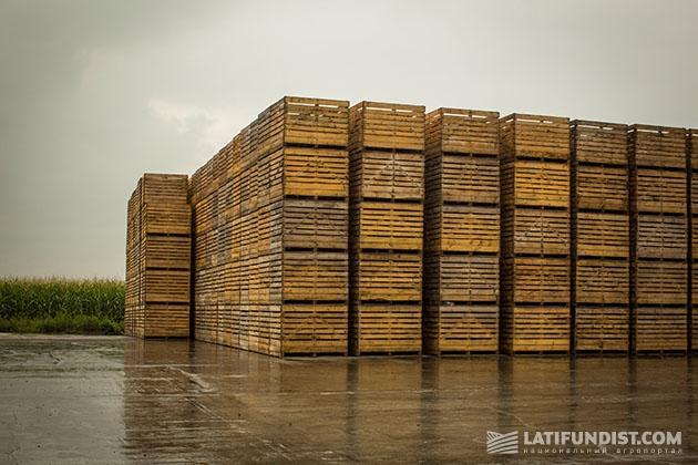 Ящики для хранения картофеля