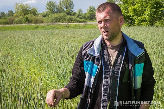 Руководитель отдела растениеводства компании «ДФУ Агро» Андрей Осадчук