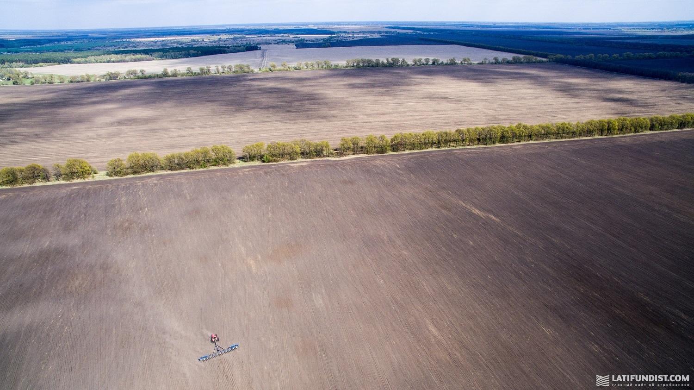 Поля компании «Агротрейд» в Черниговской области