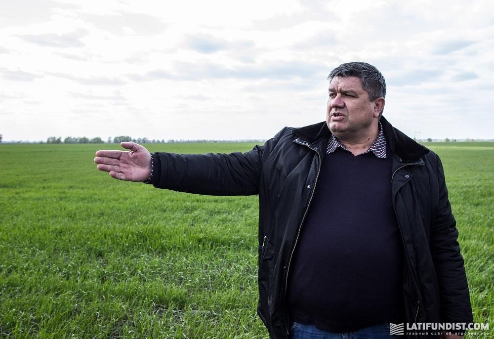 Директор Черниговского кластера компании «Агротрейд» Сергей Черевишник