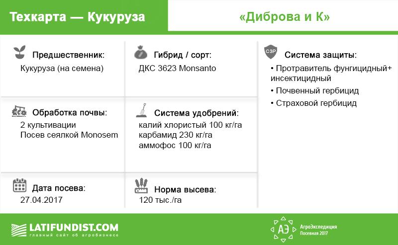 Техкарта кукуруза Диброва и К