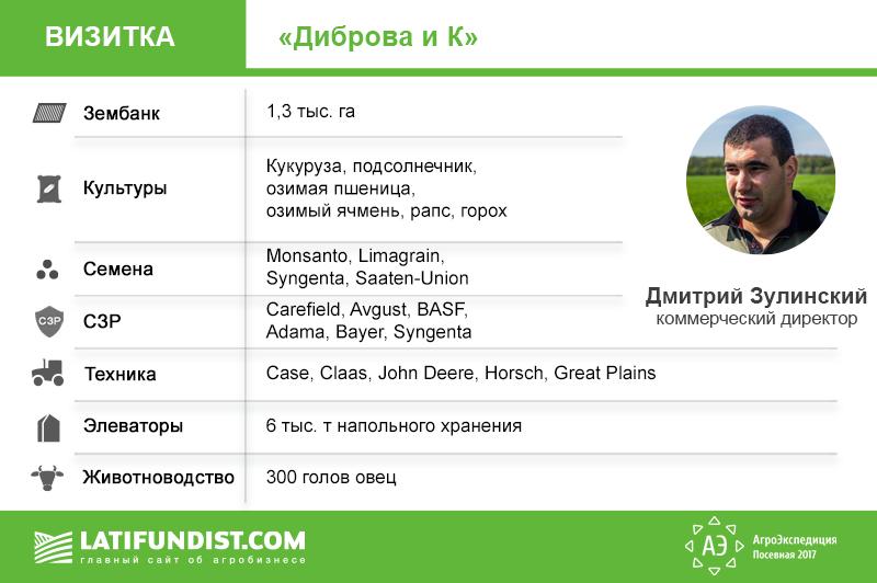 Визитка Диброва и К
