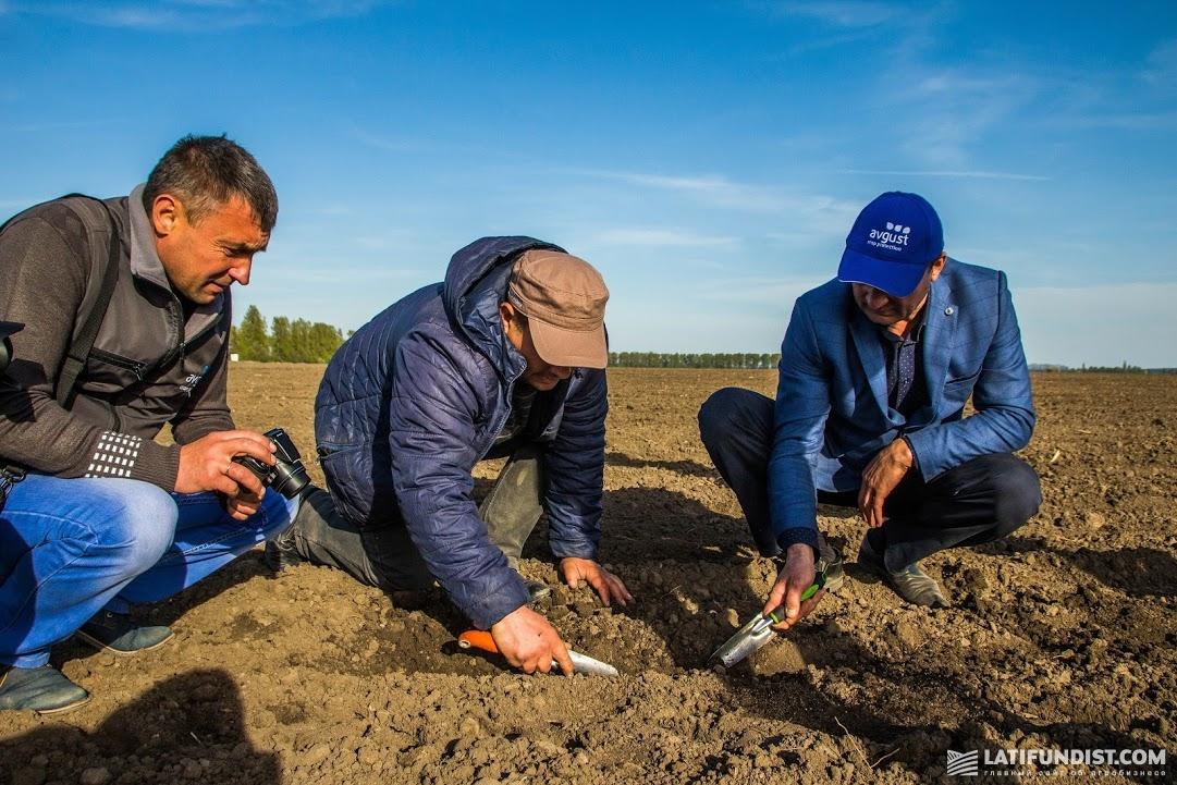 Поле «Зернопродукт МХП» готовят под посев