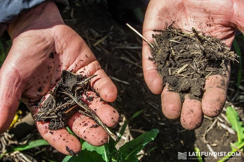 Осматриваем почву на полях предприятия «Колос»