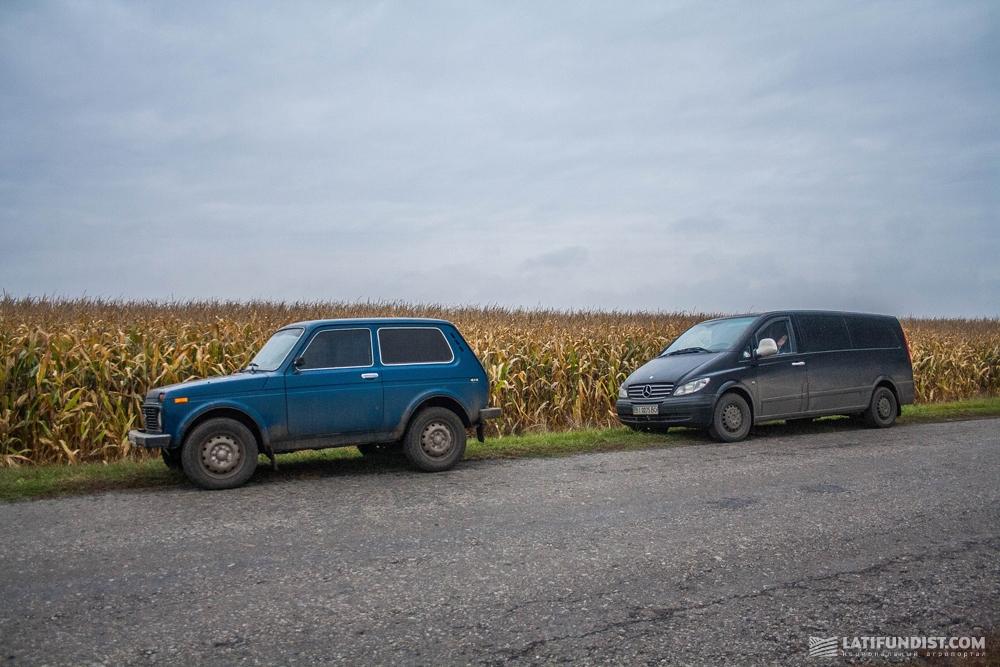 Дорога в кукурузные поля