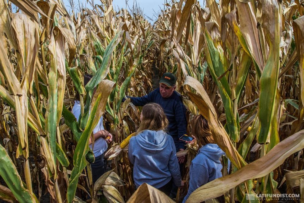 Юрий Семироз, главный агроном «Зернятко» с АгроЭкспедиторами в кукурузном поле