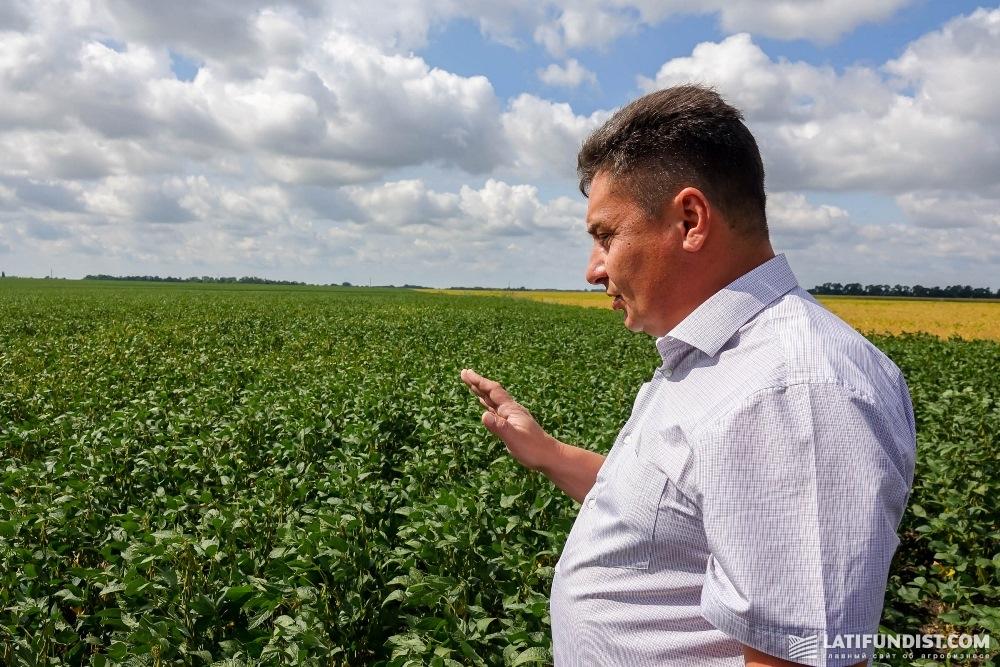 Сергей Середа рассказывает о технологии выращивания сои