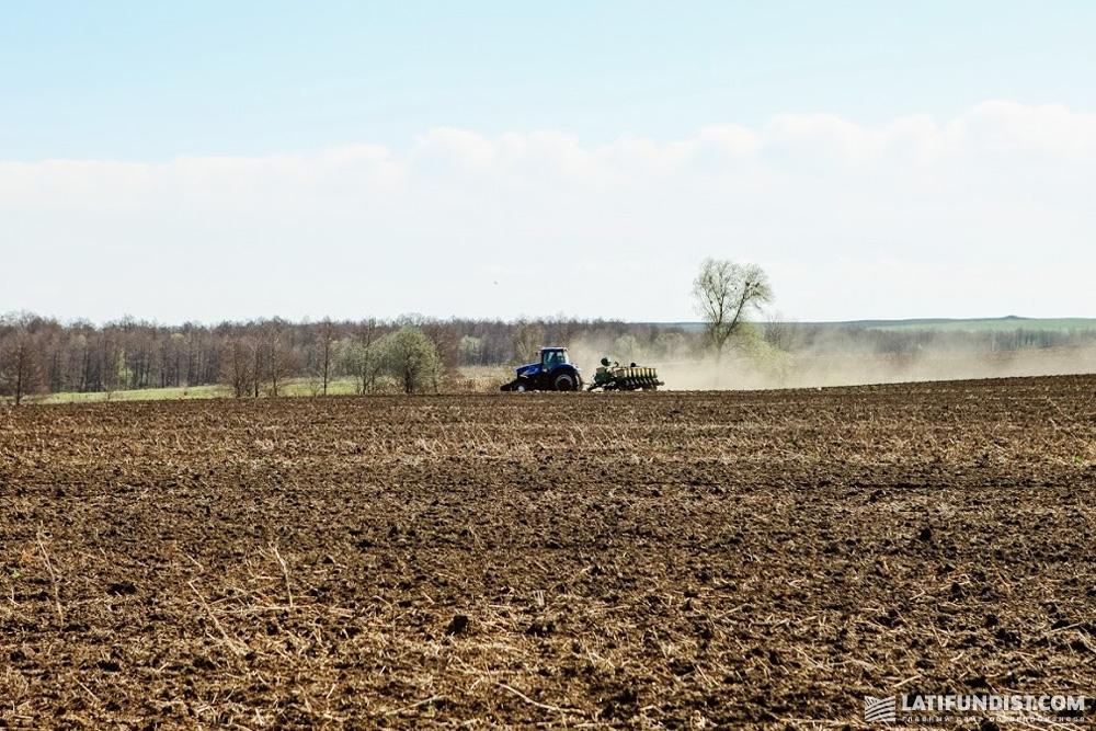Посев кукурузы на поле компании «Кернел»