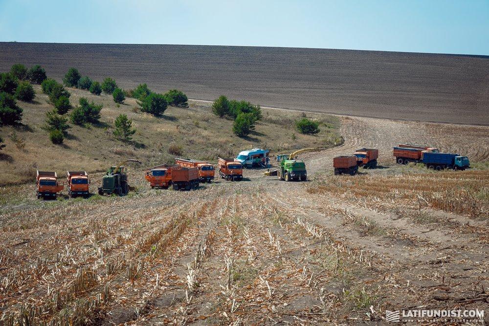 Техника на уборке кукурузы в хозяйстве «Украина»