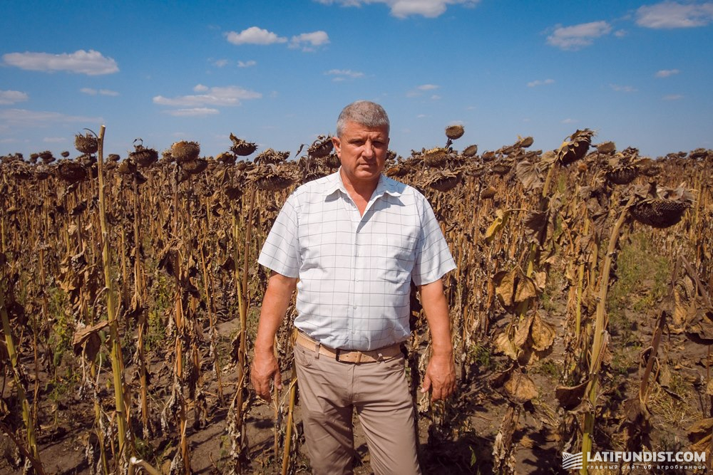 Николай Касимов, директор хозяйства «Им.Суворова»