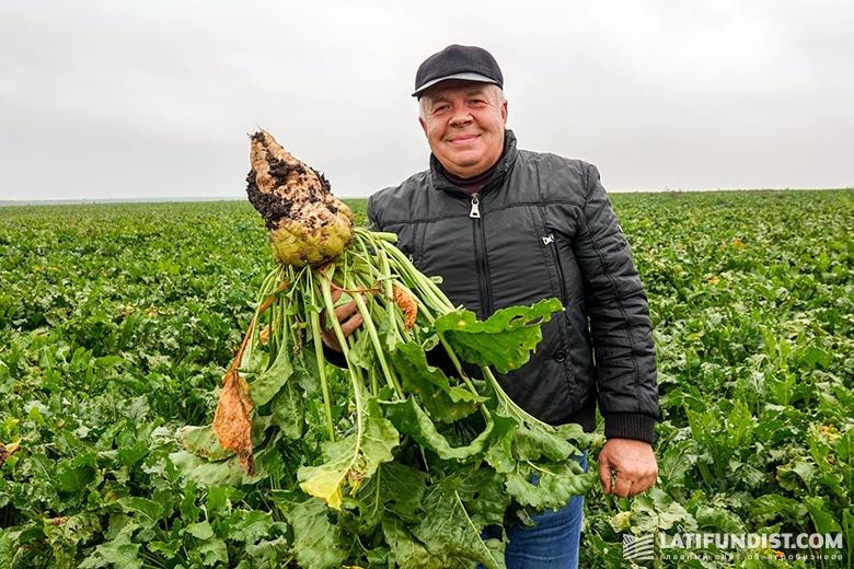 Григорий Опанасенко, кандидат сельхознаук, главный технолог предприятия «Бучачагрохлибпром»