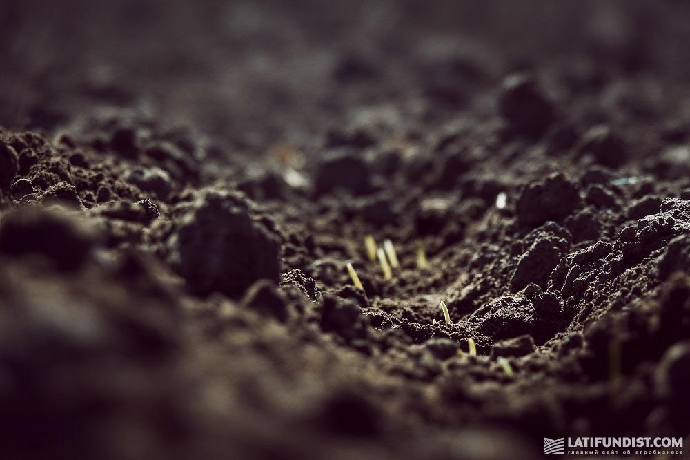 Каждый год украинские аграрии ощущают, как меняются климатические условия