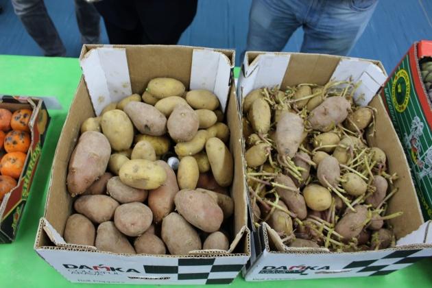 Для долгосрочного хранения картофель обрабатывают эфирными маслами