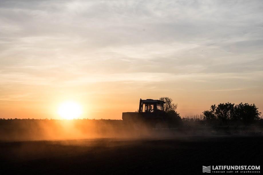 Дешевая аренда земли — это миф