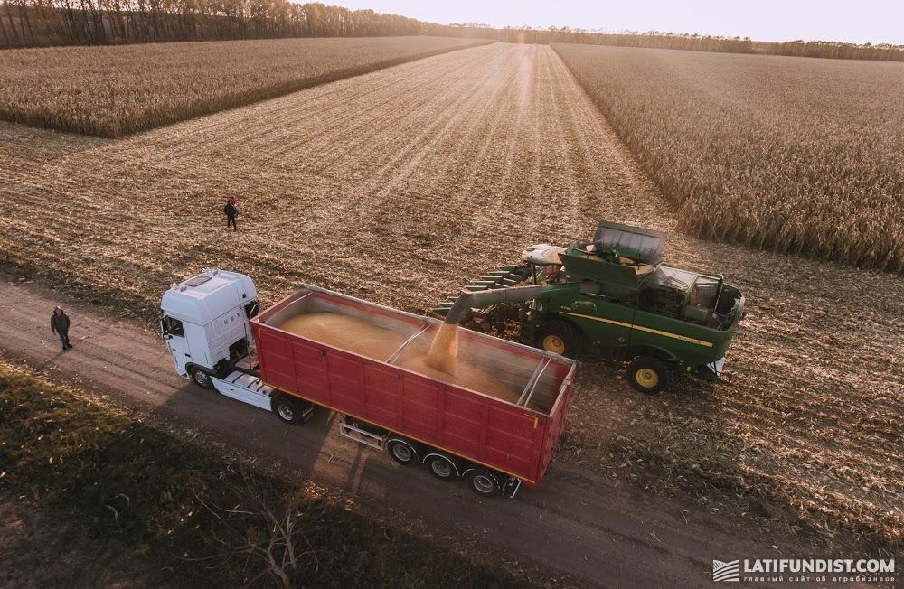 Уборочная кампания кукурузы в Украине