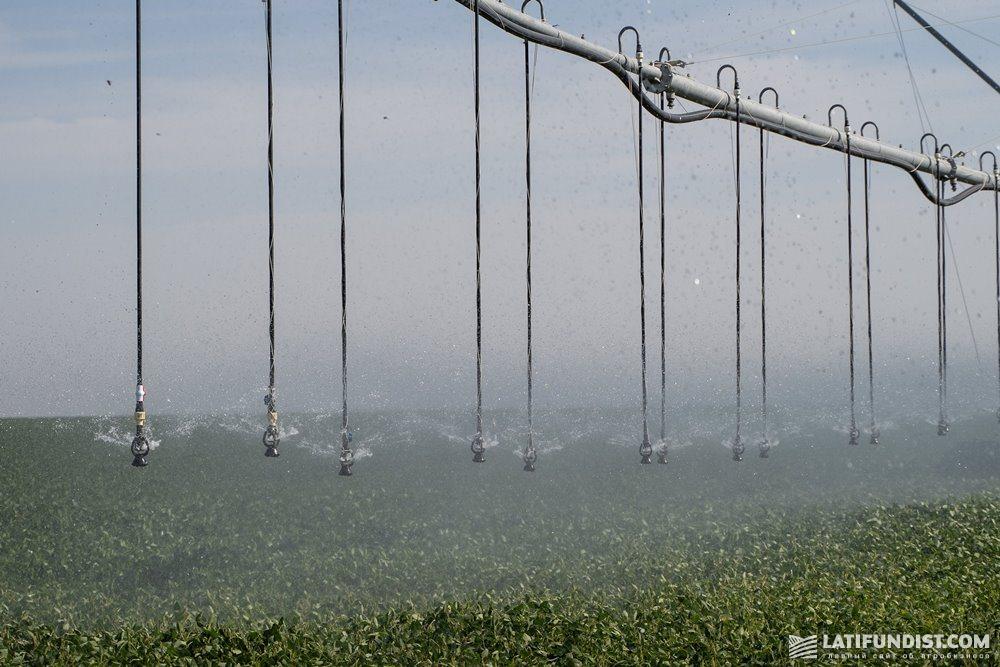 Дождевальная машина Valley с помощью распылителей создает облако дождя