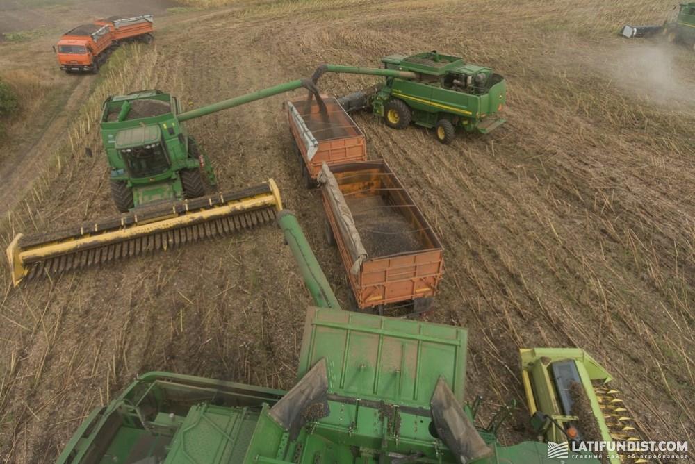 Уборка урожая на поле хозяйства «Лан»