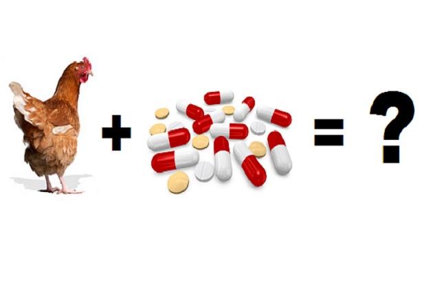 Применение антибиотиков в птицеводстве