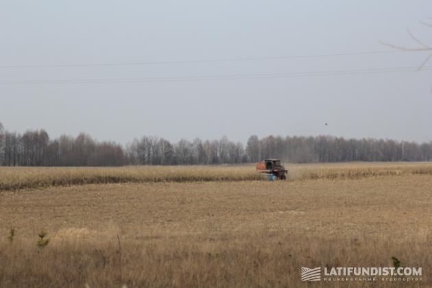 Уборка кукурузы и задискованное поле после уборки кукурузы весной