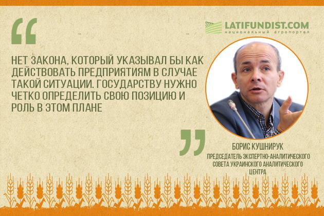 Борис Кушнирук, Председатель экспертно-аналитического совета Украинского аналитического центра