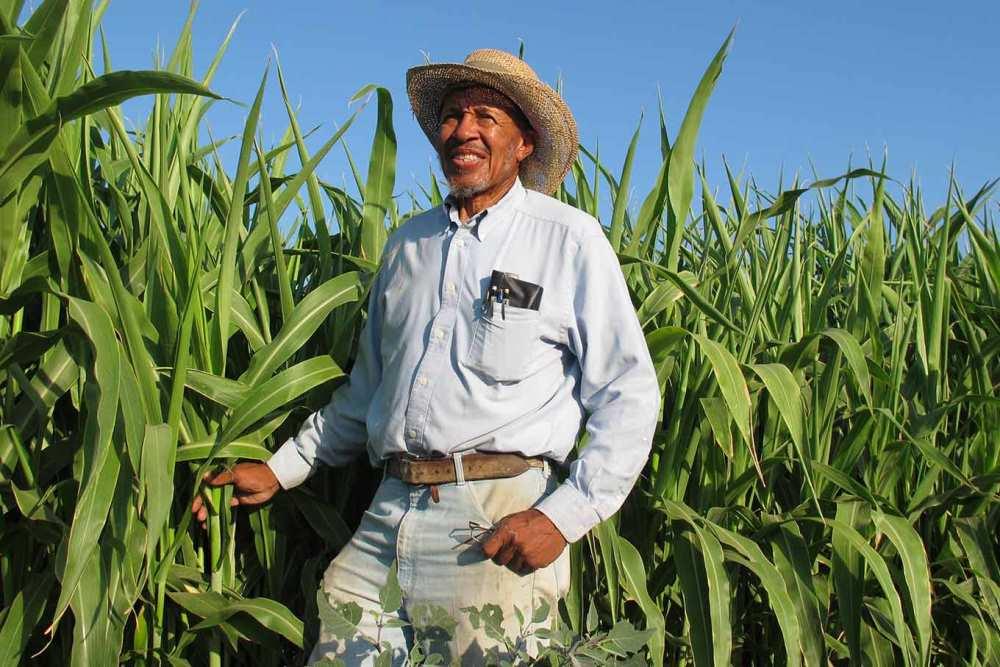 Американский фермер