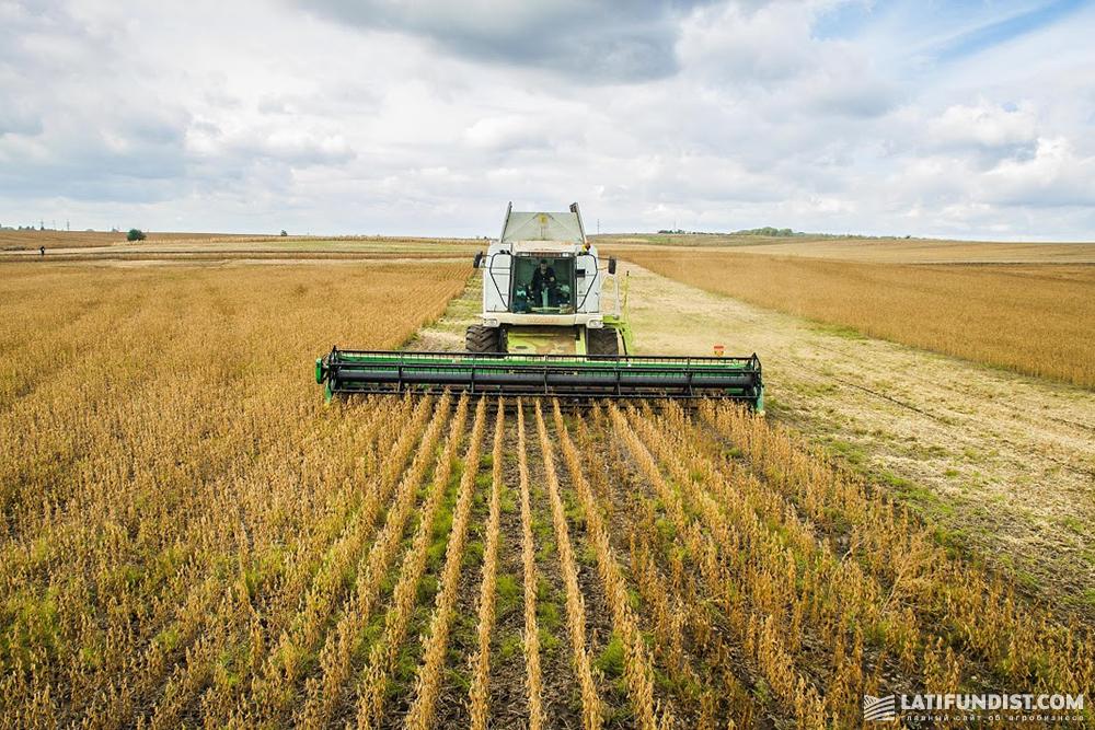 Soybean harvest in Ukraine