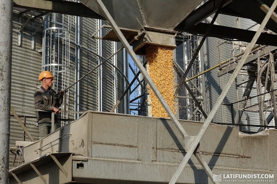 Погрузка зерна в зерновоз