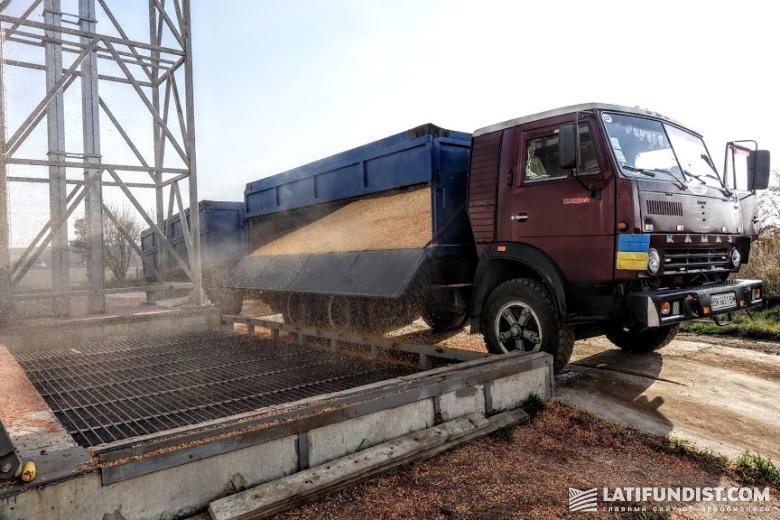 Для перевозки зерновых и масличных традиционно используются авто и железнодорожный транспорт