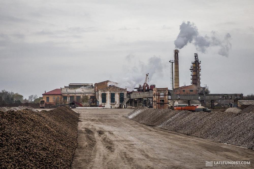 Кагаты Ильинецкого сахарного завода