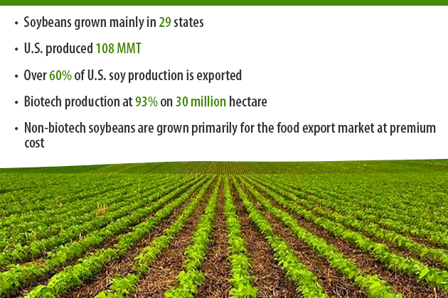 Production of soybeans