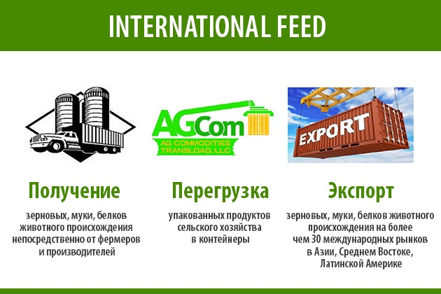International Feed