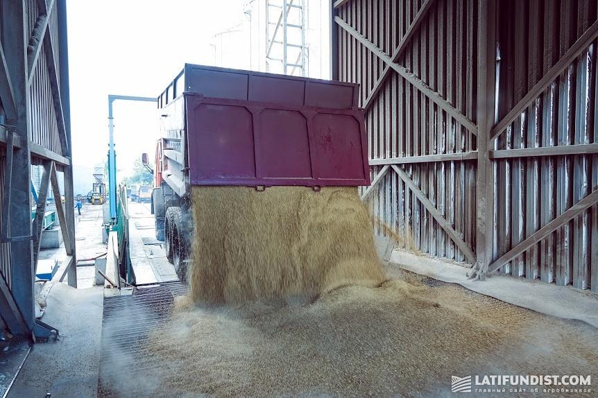 Отгрузка зерна на элеваторе