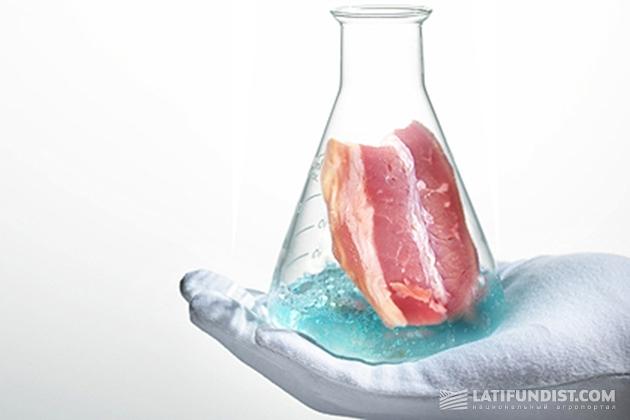 Мясо in vitro. Фото: meatinfo.ru
