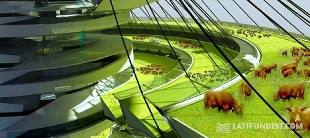 Вертикальное сельское хозяйство. Фото: himprom.ua