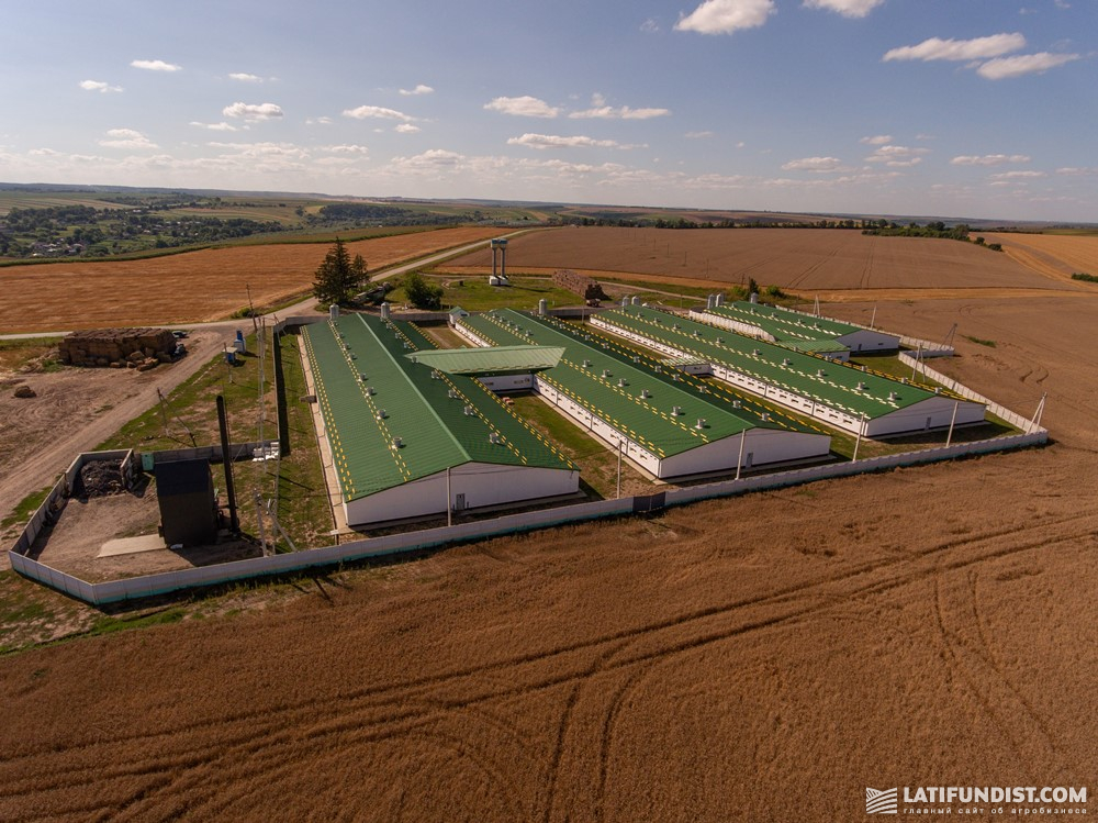 Ферма VITAGRO