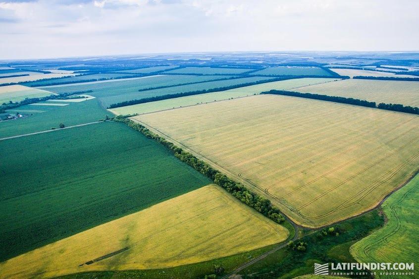Проектом закона предусмотрена максимальная норма в одни руки: для фермеров — 200 га, а для сельхозпредприятий — 200 тыс. га.