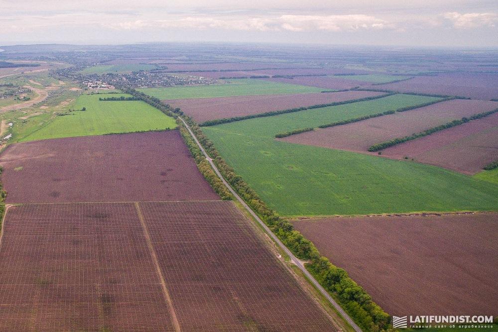 Украинцы не будут продавать землю в в тех количествах, которые прогнозировались два-три года назад